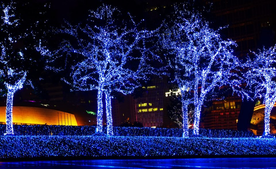 See the Christmas in Lights Display Before It\u0027s Gone